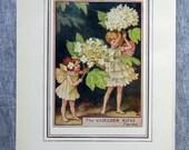 Guelder Rose Flower Fairy...
