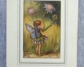 Scabious Flower Fairy Vin...