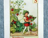 Strawberry Alphabet Lette...