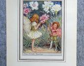 Pink Fairies, Flower Fair...