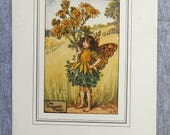 Ragwort Flower Fairy Vint...