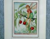 Cherry Tree Flower Fairy ...