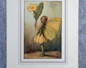 Primrose Flower Fairy Vin...
