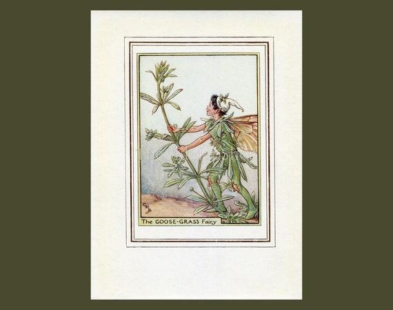 Nursery Decor Decoration. Book Plate Wayside Fairy Jack-By-The-Hedge Flower Fairy Vintage Print 1950/'s Cicely Mary Barker Wall Art
