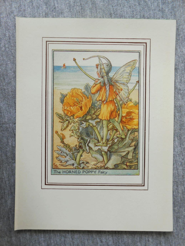 Horned Poppy Flower Fairy Vintage Print C1950 Cicely Mary Etsy