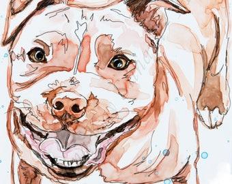 SALE! BOGO Free 5 x 7 Colorful Pet Sketches , PET portraits from your photos, original art