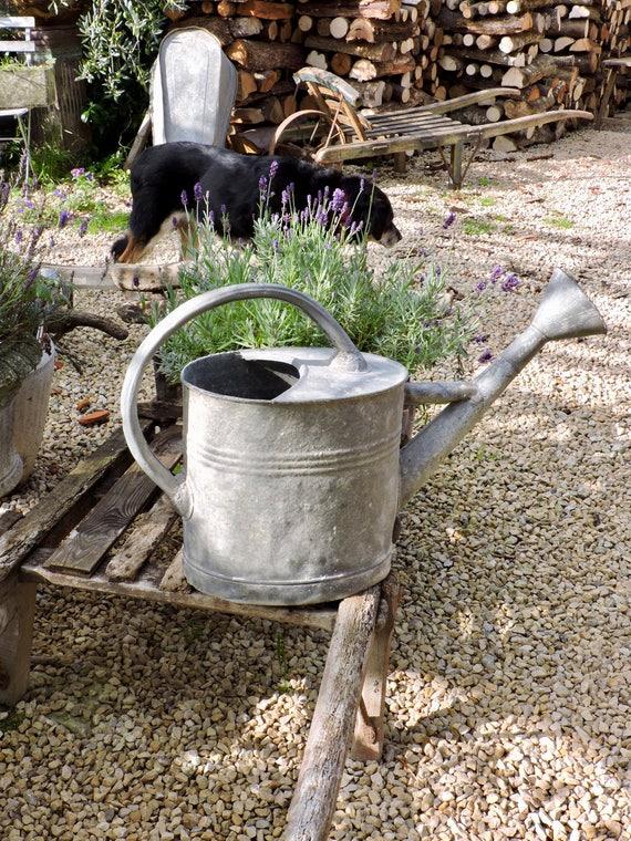 Grand arrosoir avec Rose Outil de jardin Français des années | Etsy