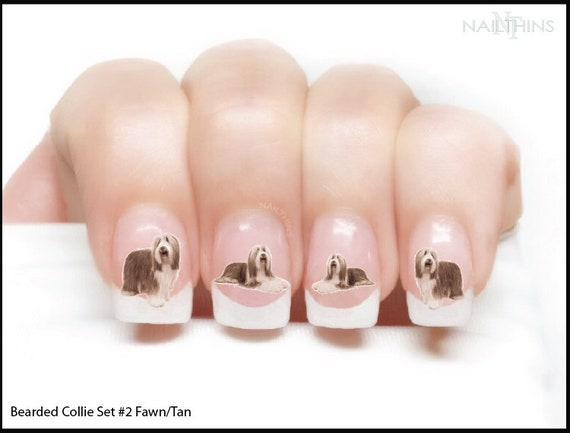 Nail Decals Bearded Collie Set No 2 Fawn Brown Nail Art Wraps Etsy