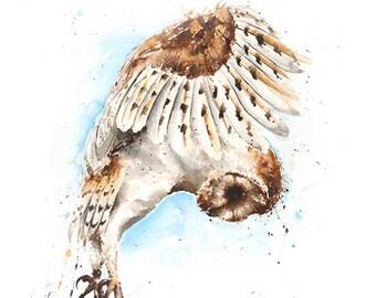 OWL ART PRINT - barn owl print, watercolor owl, owl decor, owl wall art, owl lover gift, owl portrait, owl painting