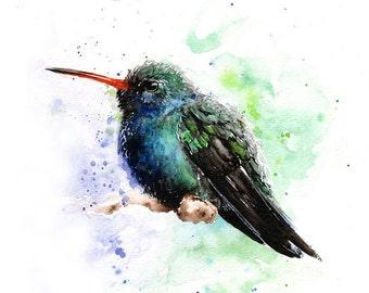 HUMMINGBIRD WATERCOLOR   Bird Painting, Broad Billed Hummingbird Art Print,  Bird Lover, Bird Wall Art, Abstract Bird Art, Bird Decor
