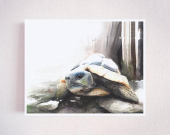 Turtle watercolor print, tortoise painting, watercolor turtle print, land turtle artwork, turtle decor, turtle gifts, turtle wall art