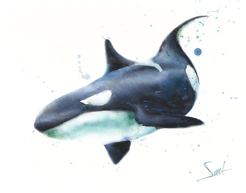 Orca and Baby Art Print 11 x 14 Contemporary Abstract Watercolor Wall Decor