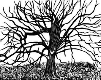 Park Hornbeam original woodcut print