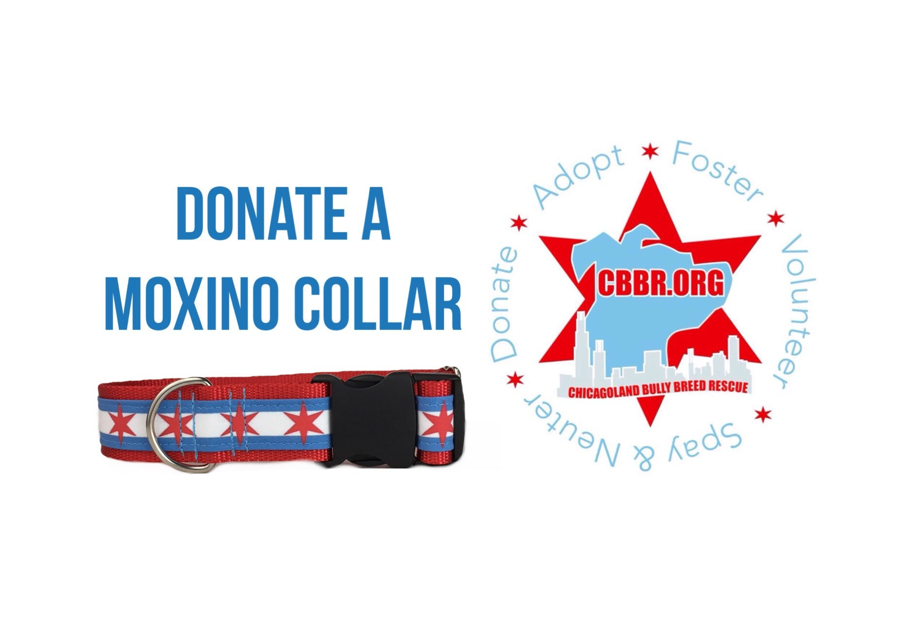 Donate a custom collar to Chicagoland Bully Breed rescue