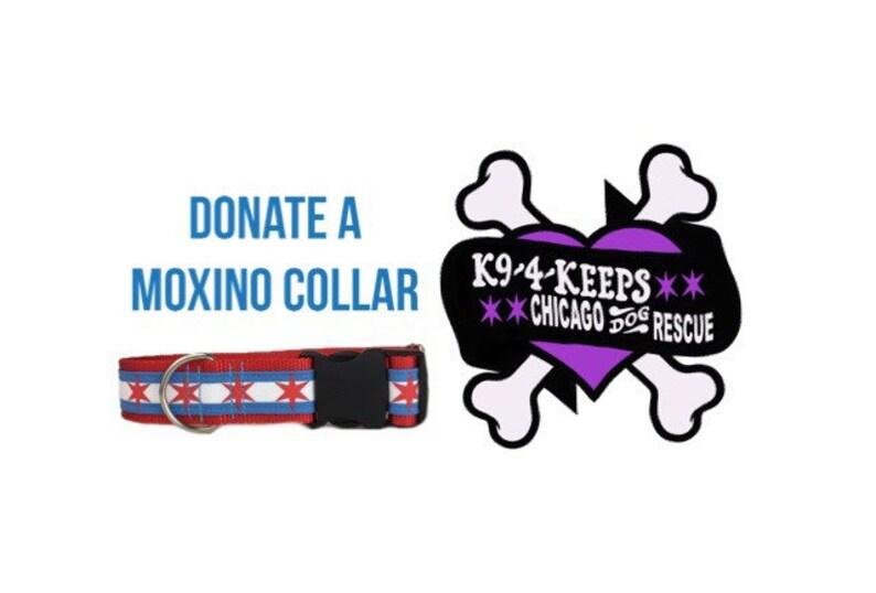 Donate a custom collar to K9 4 Keeps rescue program. image 0