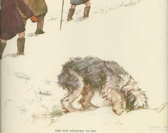 Old English Sheepdog by Vernon Stokes 1944 colour dog print Shepherd OES Herding Dog Working Dog Wall Art Home Decor Vintage Print