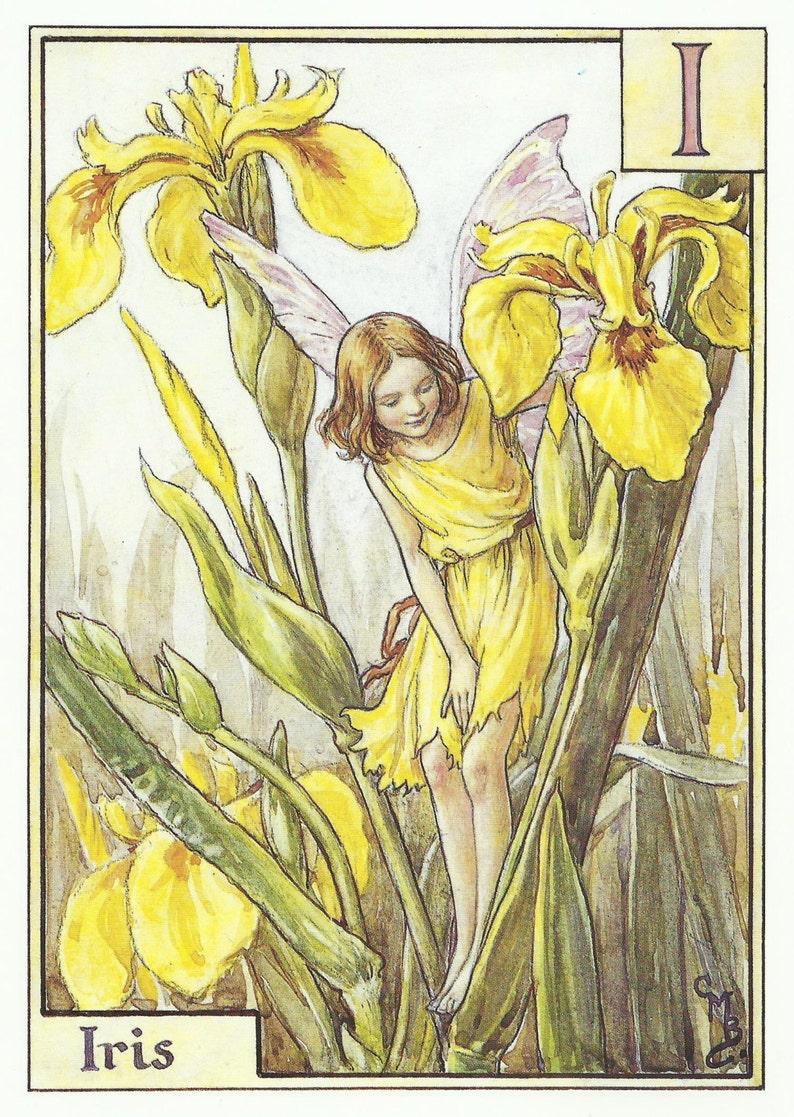 Iris Fairy par Cicely Mary Barker Flower Fairies vintage Print image 0