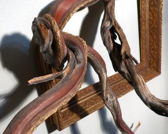 Fusion Frames NW COMMISSION DEPOSIT - Deposit for Custom Order: Tree Branch Frame Sculpture