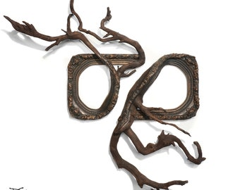 Fusion Frames NW Tree Branch Frame Sculpture - TEMPEST: Antique Frame (19c wood & gesso) with Grafted Fir Tree Roots