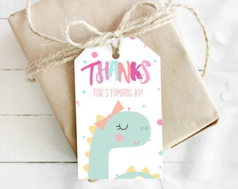 Dinosaur Princess Ballerina Drive By Thank You Tags/Labels/Stickers