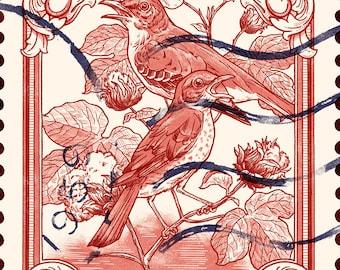Shirley Collins Print - 'The Ballad of Shirley Collins'