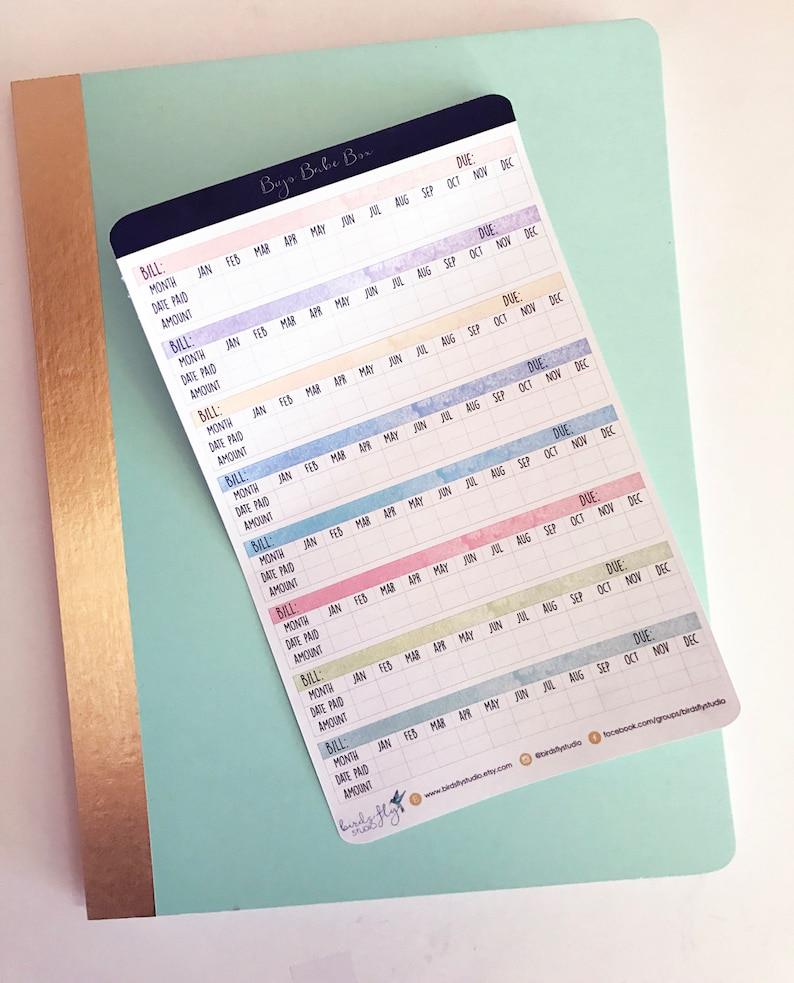 Bujo Budget Tracker Stickers  Bullet Journal Stickers / image 0