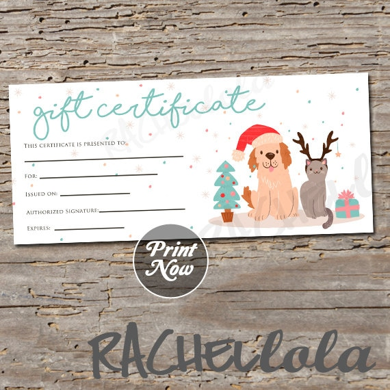 photography gift certificate template free download