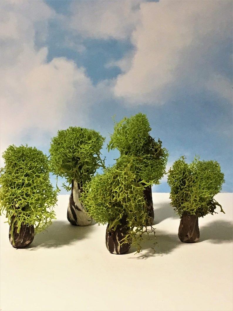 Miniatur Bäume