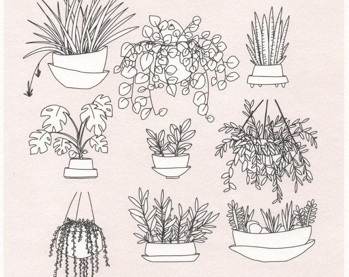 Plants Print. 8x8 or 11x11. Square print. Wall art. Plant lover.