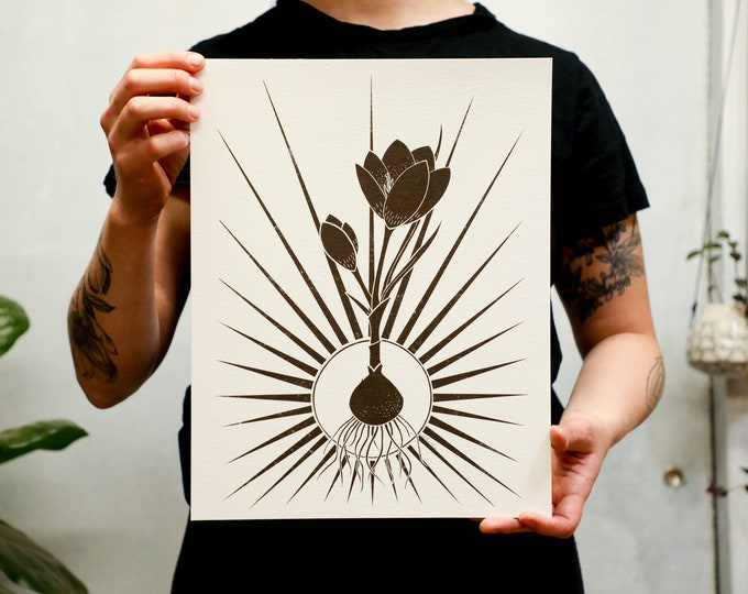 Radiant Crocus Print. White or light brown kraft paper. 8x10 inches or 11x14 inches.