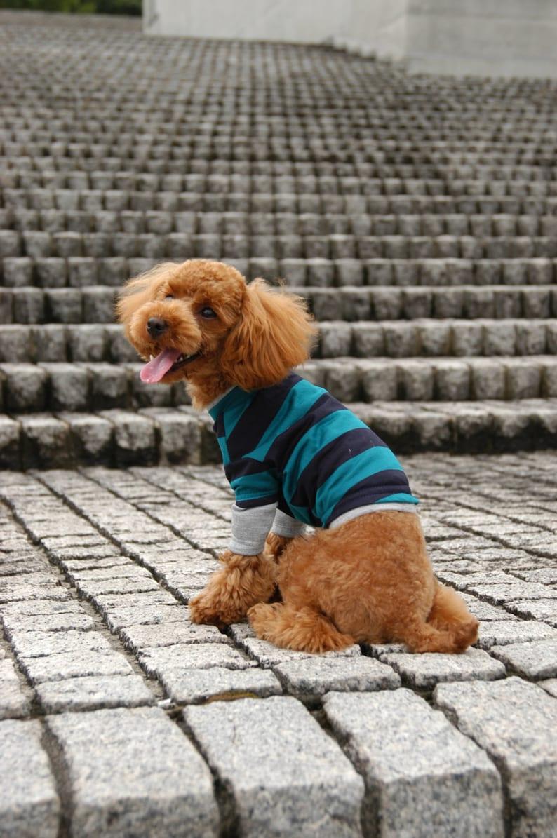 Dog Clothes 3 WAY T-SHIRT PDF Pattern & Recipe image 0