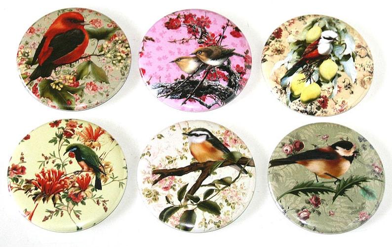 Bird Floral Illustrations  Set of 6 Large Fridge Magnets image 0