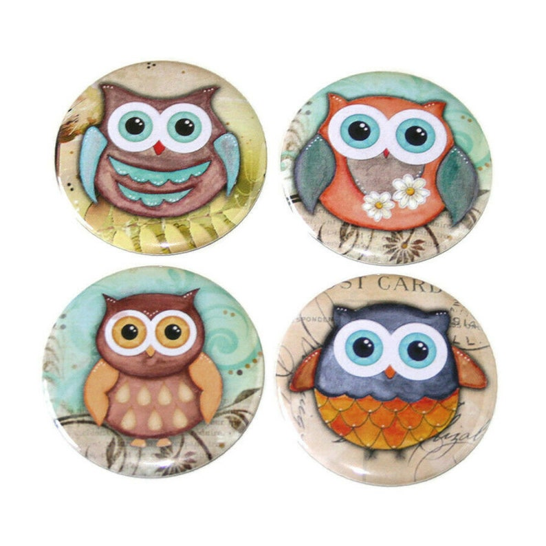 Cute Kawaii Owls  Set of 4 Large Fridge Magnets image 0