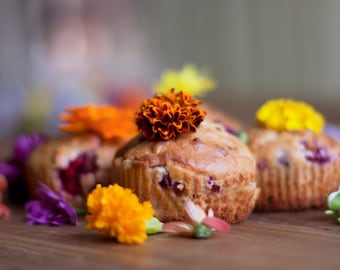 Colour Me Pretty - Muffin Photography, Still Life, Fine Art Photo, Food Photography, Colourful Kitchen Art, Gift For Baker, Floral Print