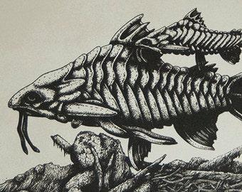 Plated Longbeard - Silkscreen Print - Scientific Study