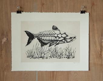 Stoney Soldierfish - Silkscreen Print - Scientific Study