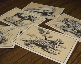 Animal Postcards - Set of 5 - Screen Printed - Society for Scientific Exploration
