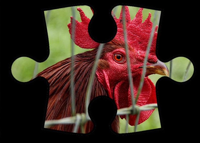 Jason Savage Images Online Jigsaw Puzzles  Group 2 image 0