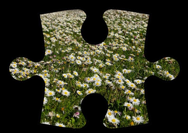 Jason Savage Images Online Jigsaw Puzzles  Group 3 image 0