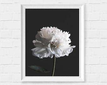 Black and White Peony Print - Flower Print - Printable Wall Art - Peony Poster - Instant Download Printable Art - Minimalist Modern Decor