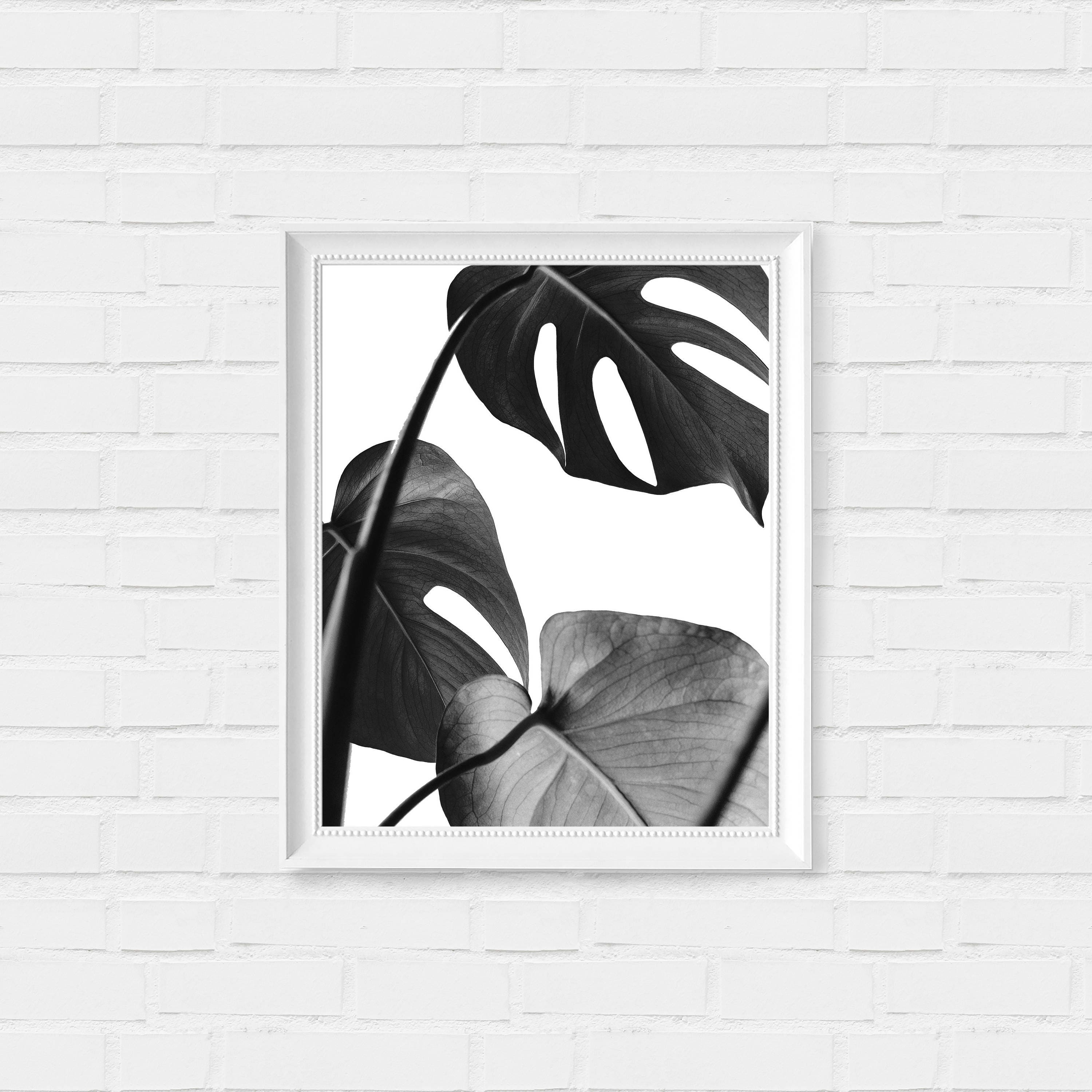 graphic regarding Black and White Printable Art titled Tropical Leaf Print - Plant Print - Blank and White