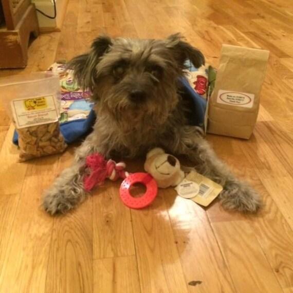 Urlaub Wuff Pack Haustier Geschenk Box Genuss Spielzeug Etsy