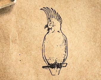 Cockatoo Sitting Rubber Stamp Mounted Wood Block Art Stamp