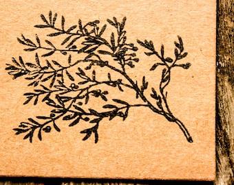 Delicate Olive Branch Return Address Olive Wood Stamp