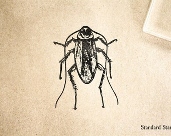 realistic cockroach drawing