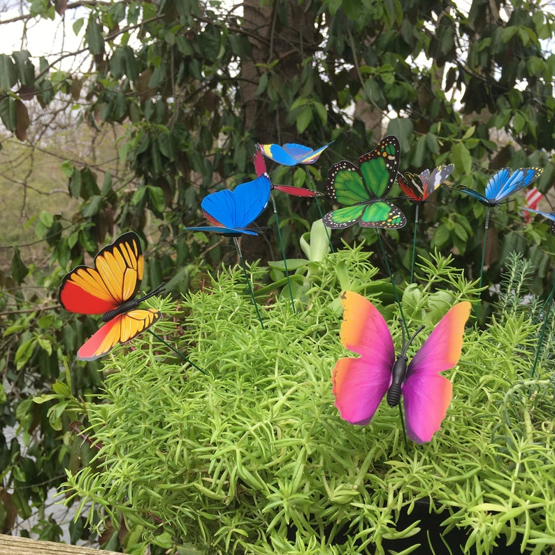 12  Butterfly Garden Stakes Garden StakesPotted plants image 7
