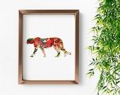 Cheetah No. 3, cheetah print, cheetah wall art, animal art print, animal wall art, animal nursery prints, art print