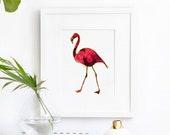 Flamingo No.2, flamingo art, animal art print, flamingo decor, animal nursery prints, art print