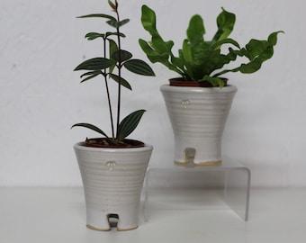planter, small planter pot, succulent pot, succulent planter, small planter, small ceramic planter, white planter pot, flower pot