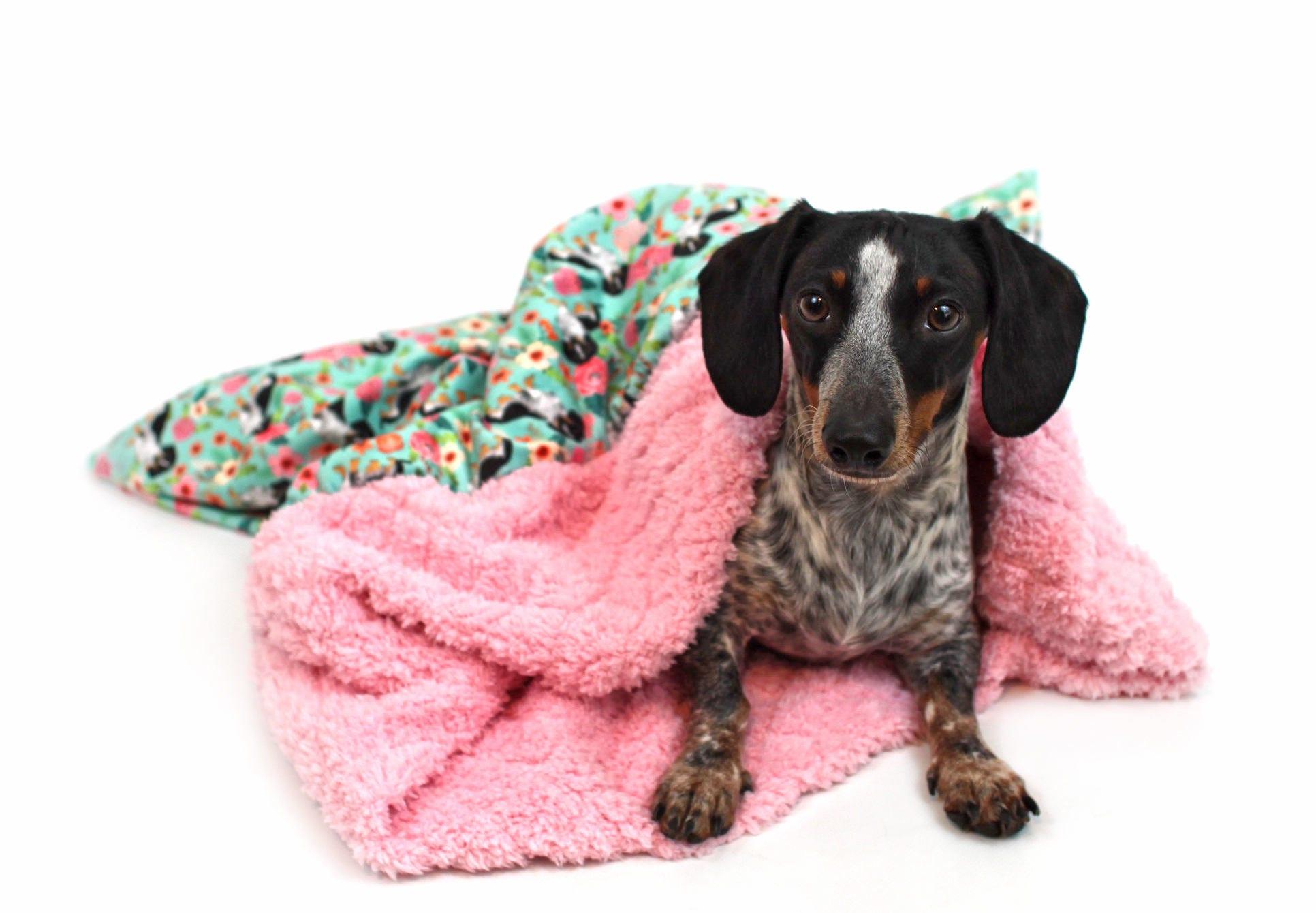 Weenie Pocket Burrow Dog Bed Burrow Bag Burrow Bed Sleep
